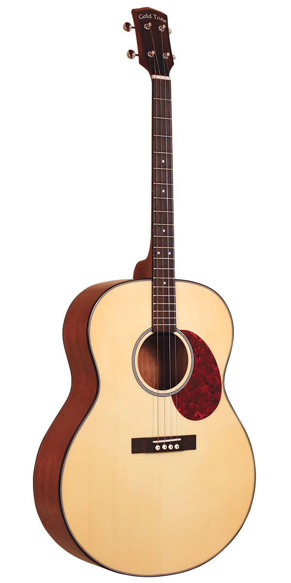 Gold Tone Tenor Guitar For Left Handed Players