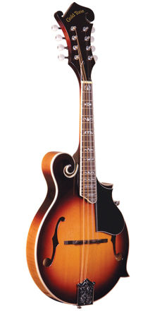 Gold Tone Gm-35/L Entry Level F-Style Mandolin For Left Hand Players