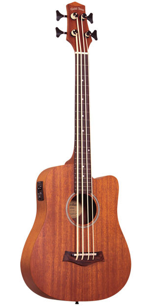 """Gold Tone M-Bass/Fl Fretless 23"""" Scale Microbass For Left Hand Players"""