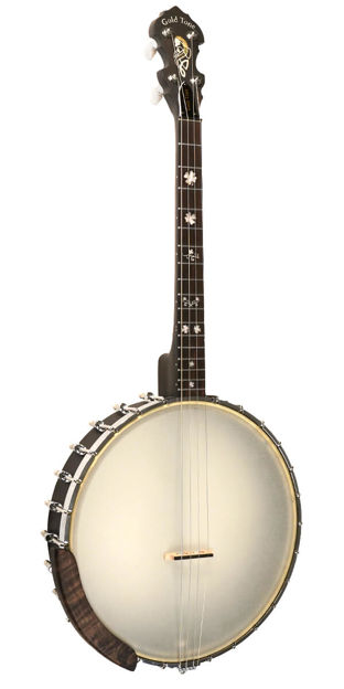 Gold Tone 4-String Irish Tenor Openback Banjo With 17 Frets For Left Hand Players